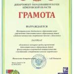 За победу в областном конкурсе среди детско-юношеских школ