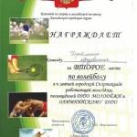 За второе место городской Спартакиаде (волейбол)